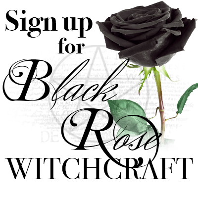 Black Rose Witchcraft